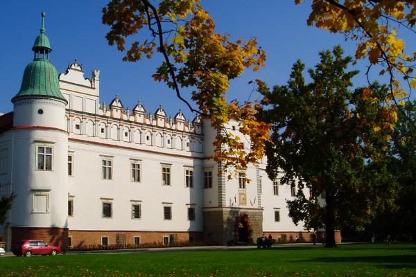 Kastelenreis Zuid Polen - Kasteel Baranow
