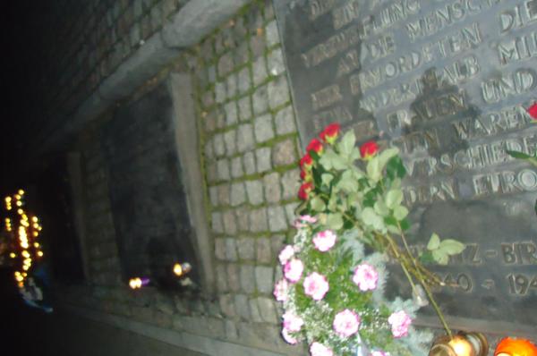 Krakau / Auschwitz vliegreis