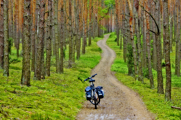 KAMP_ścieżka-z-rowerem_pion_TG_HR