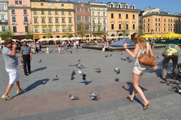 Krakau Op het Marktplein met duiven