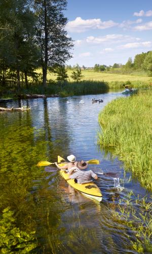 Polen, de Krutynia rivier