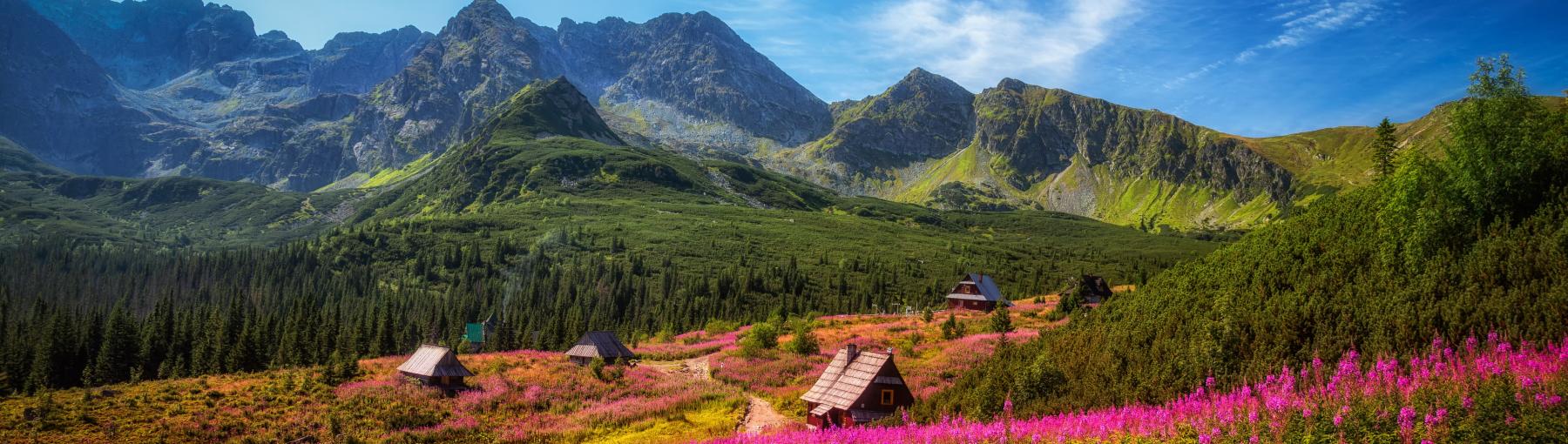 Het Tatra gebergte - Zakopane
